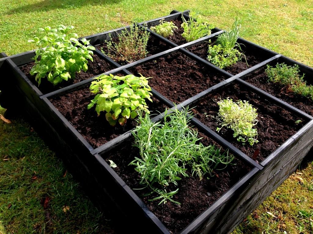 Min lille urtehave + lav selv plantepinde