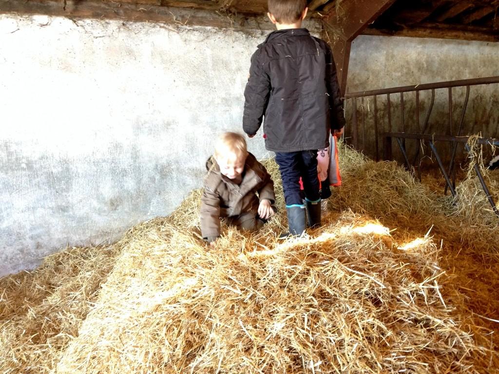 Økodag på Lundholm gård