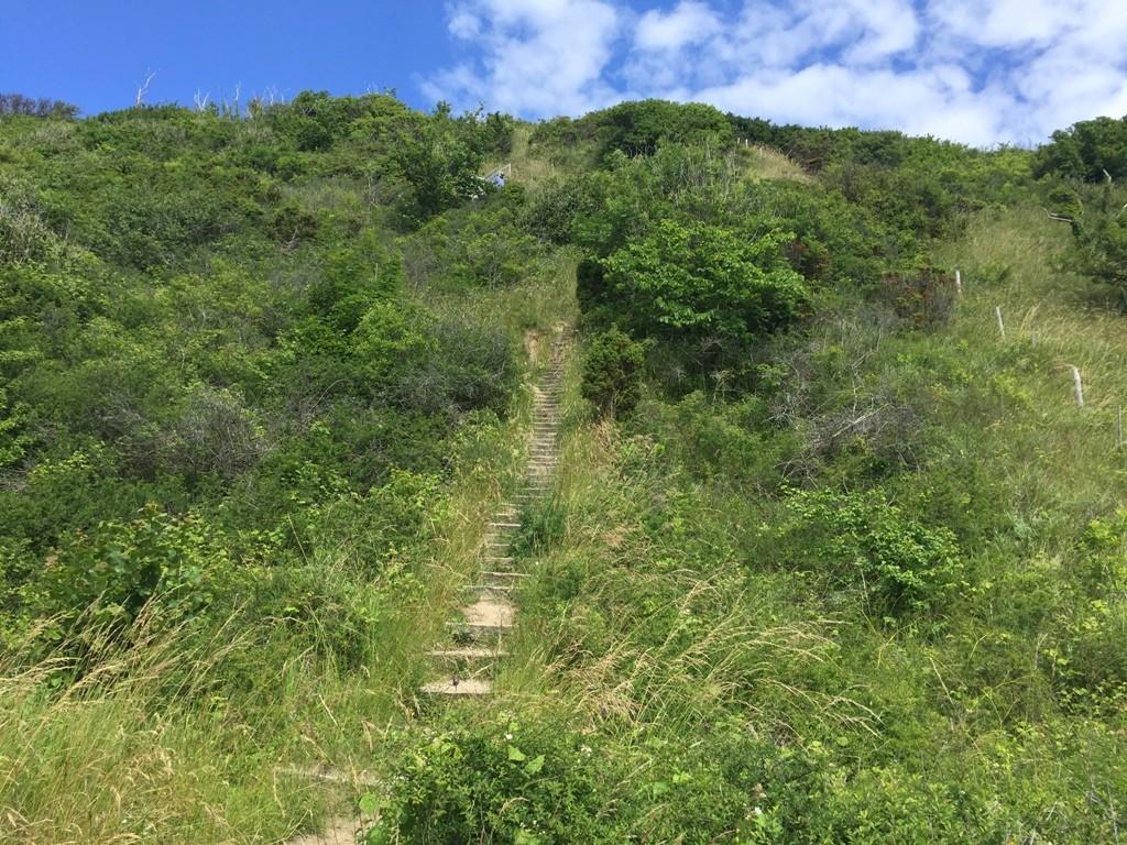 Jernhatten – Mols Bjerge