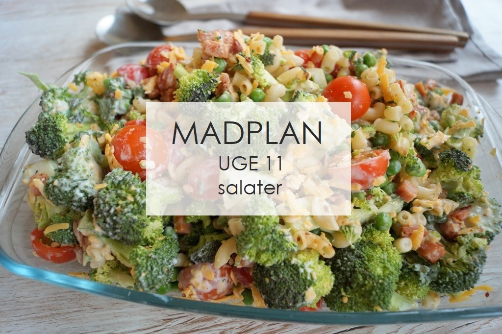Madplan uge 11 - salater